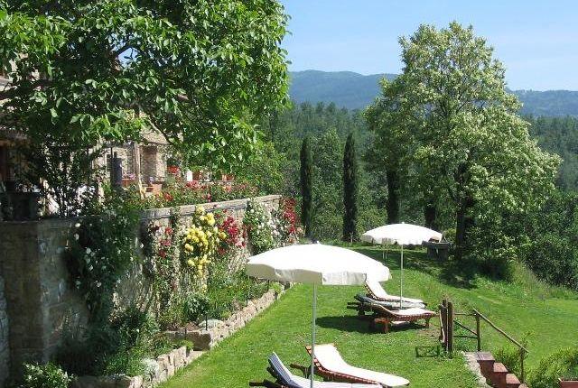 Picture No.05 of Pelago Monastic Farmhouse, Pontassieve, Tuscany