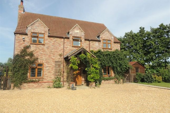 Thumbnail Detached house for sale in Back Drove, Upwell, Wisbech