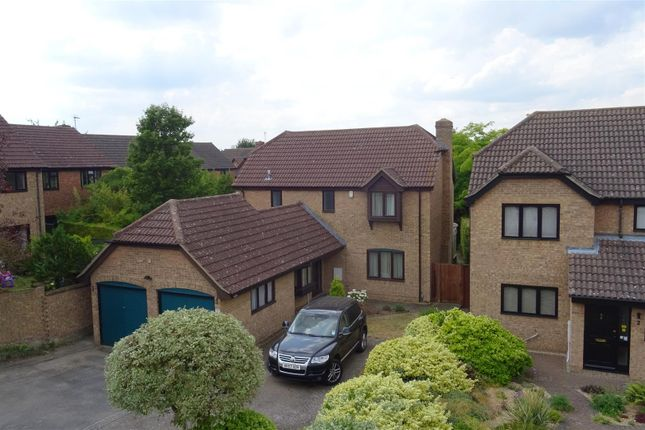 Thumbnail Detached house for sale in Coltsfoot Close, Cherry Hinton, Cambridge