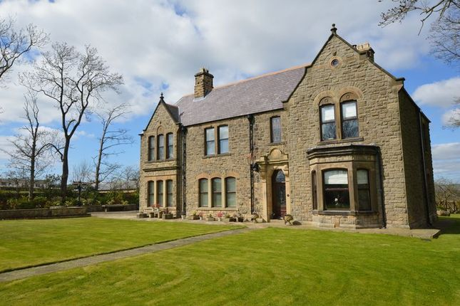 Thumbnail Equestrian property for sale in Woodside, Witton Park, Bishop Auckland