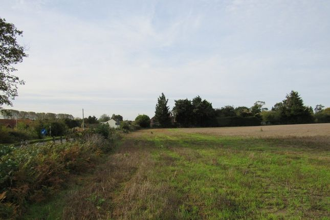 Thumbnail Land for sale in Yarmouth Road, Broome, Bungay