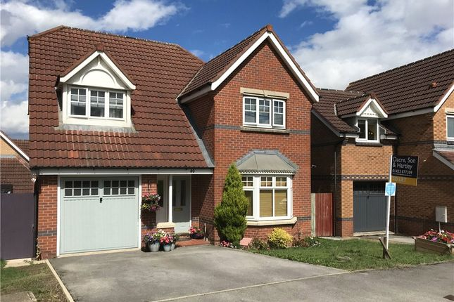 Thumbnail Detached house to rent in Trefoil Drive, Killinghall Moor, Harrogate, North Yorkshire