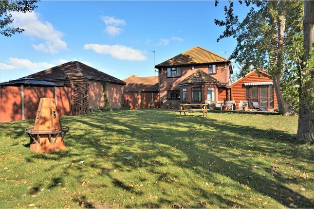Thumbnail Detached house for sale in Irwin Road, Minster On Sea