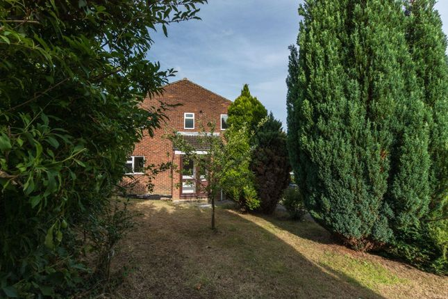 Thumbnail Property to rent in Goudhurst Close, Canterbury
