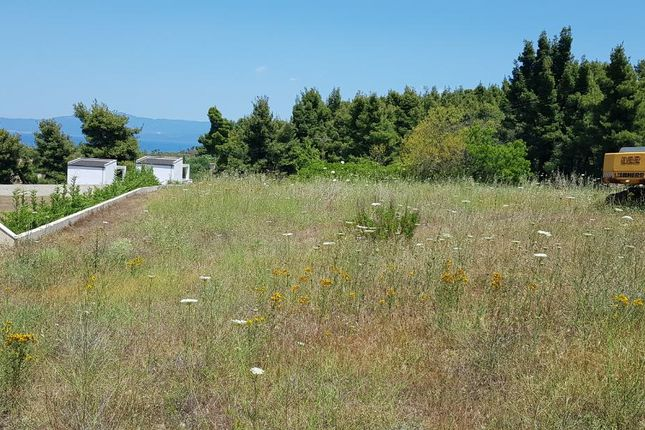 Thumbnail Land for sale in Paliouri, Chalkidiki, Gr