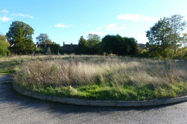 Thumbnail Land for sale in Stowfields, Downham Market