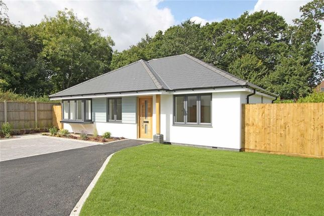 Thumbnail Detached bungalow for sale in Somerford Avenue, Highcliffe, Dorset