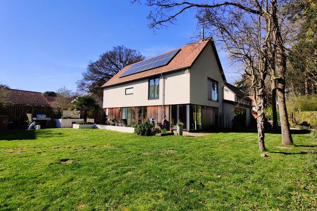 Thumbnail Detached house to rent in Littlewood, Drayton, Norwich