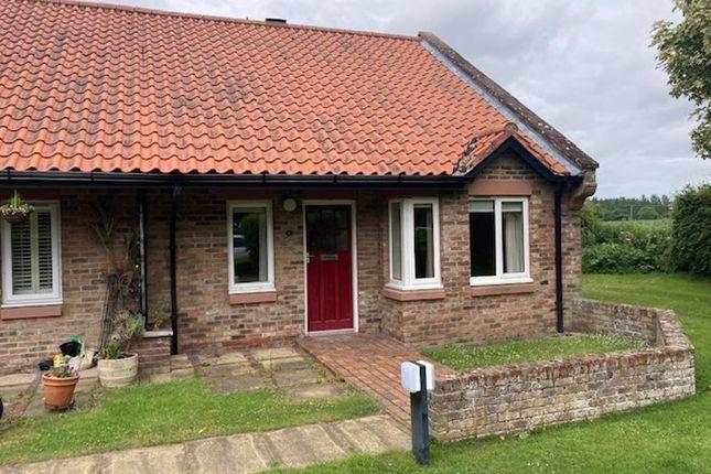 Thumbnail Bungalow to rent in Norham, Berwick-Upon-Tweed