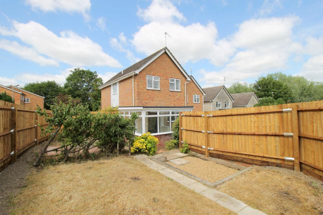Thumbnail Detached house for sale in St Albans Road, St Marys, Colchester