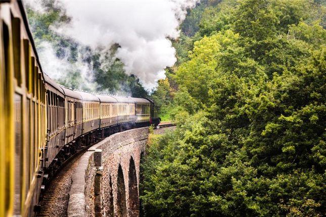 Churston Steam Train