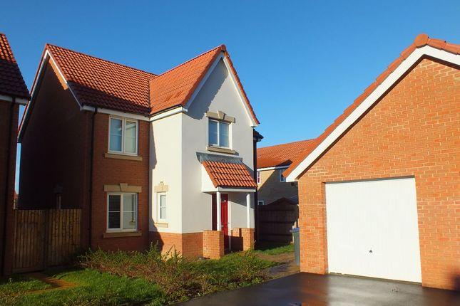 Thumbnail Detached house to rent in Hutton Close, Hilperton, Trowbridge