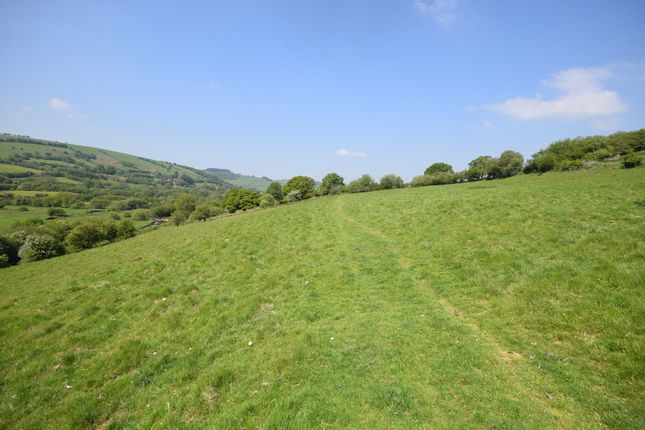 Thumbnail Land for sale in Pasture Land At Moat Farm, Beguildy, Knighton, Powys