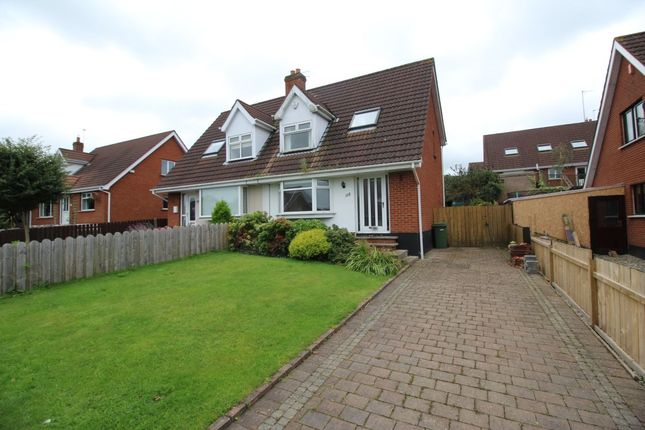 Thumbnail Semi-detached house for sale in Albany Road, Bangor