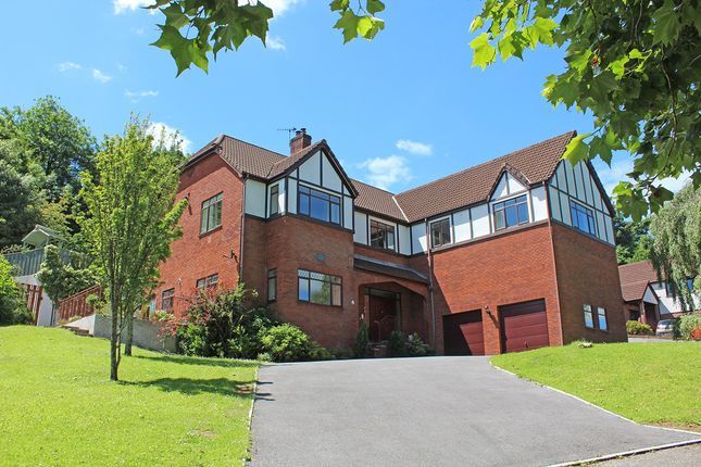 Thumbnail Detached house for sale in Beechwood Rise, Manor Park, Plymouth