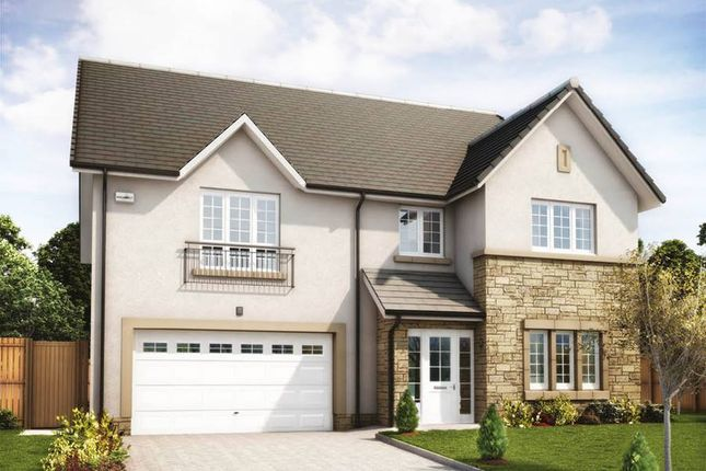"Thumbnail Detached house for sale in ""Lewis"" at Penicuik Road, Roslin"