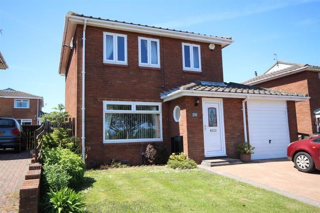 Thumbnail Detached house for sale in Station Road, The Cotswolds, Boldon Colliery