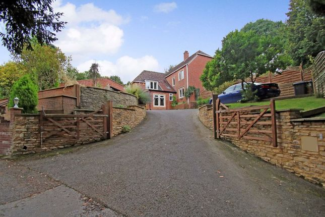 Thumbnail Detached house for sale in Bury Lane, Bratton, Wiltshire