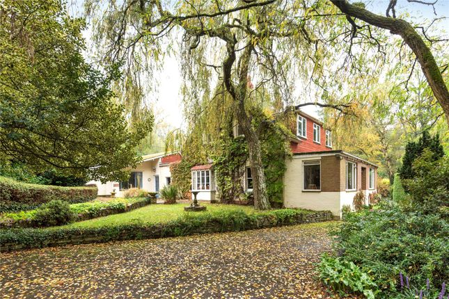 Thumbnail Detached house for sale in Yokesford Hill, Romsey, Hampshire