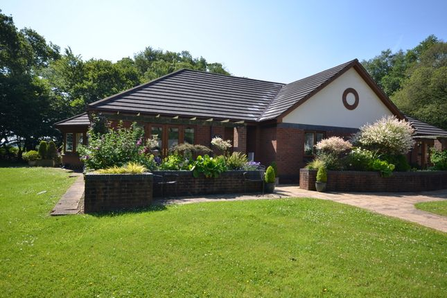 Thumbnail Bungalow for sale in 18 The Paddocks, Gittisham Hall Park, Honiton, Devon