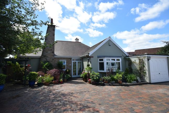 Thumbnail Detached bungalow for sale in Elm Park, Pontefract
