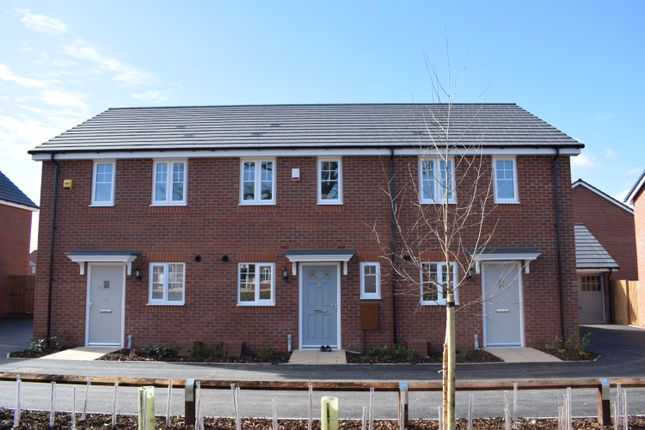 Thumbnail Terraced house to rent in Lower Farm Way, Nuneaton