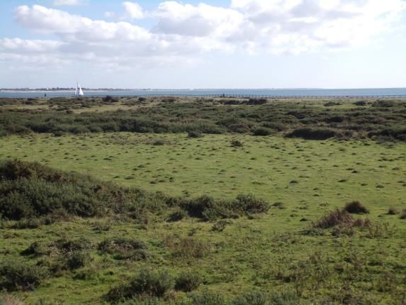 Thumbnail Detached house for sale in Sandy Beach Estate, Hayling Island