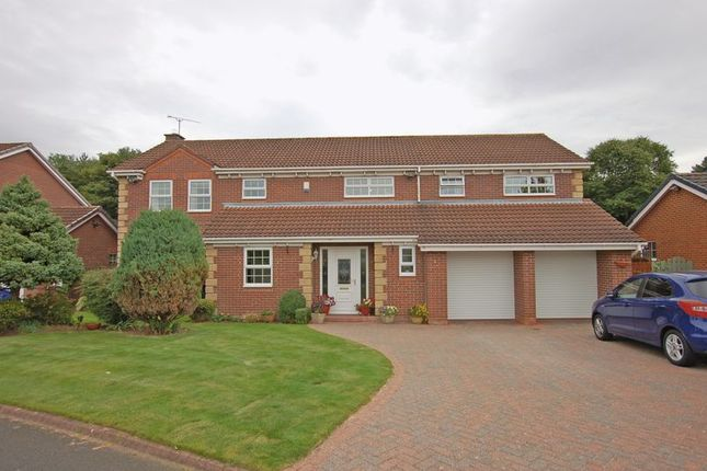 Thumbnail Detached house for sale in Carr Field, Ponteland, Newcastle Upon Tyne