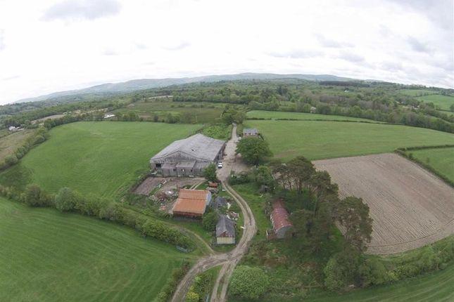 Thumbnail Farm for sale in Tregaron, Cerdigion