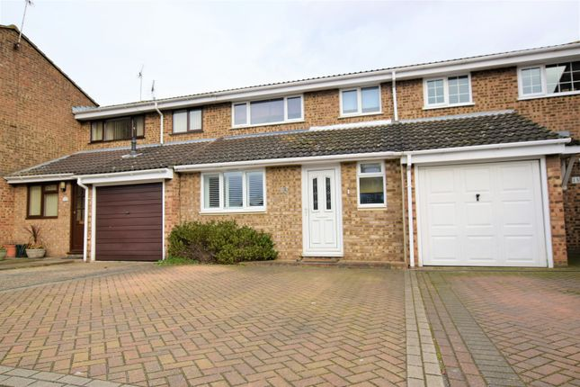 Thumbnail Terraced house to rent in Foxglove Way, Chelmsford