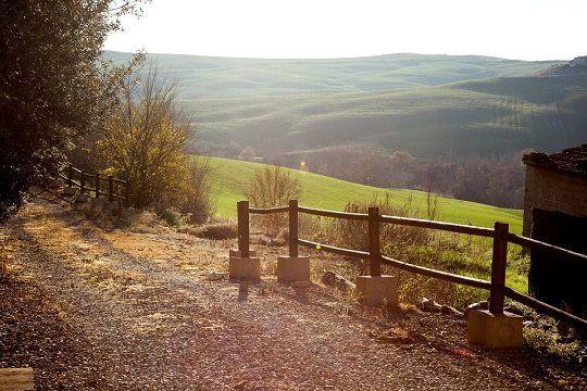 Picture No. 06 of Borgo Toscano, San Giovanni D'Asso, Tuscany
