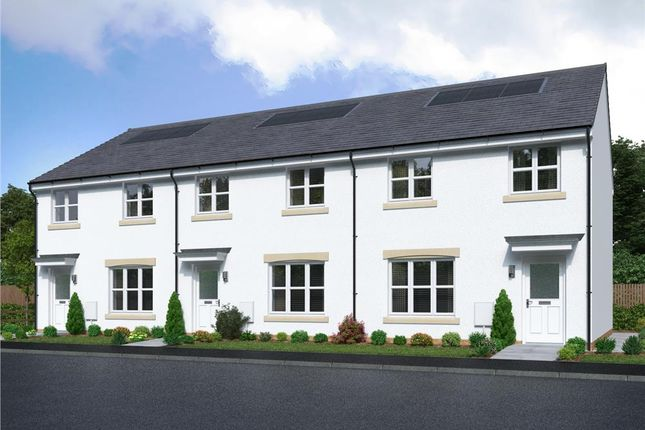 """3 bed mews house for sale in """"Meldrum Mid"""" at Leander Crescent, Bellshill ML4"""