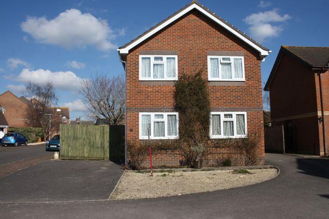 Thumbnail Detached house for sale in Elm Close, Sturminster Newton