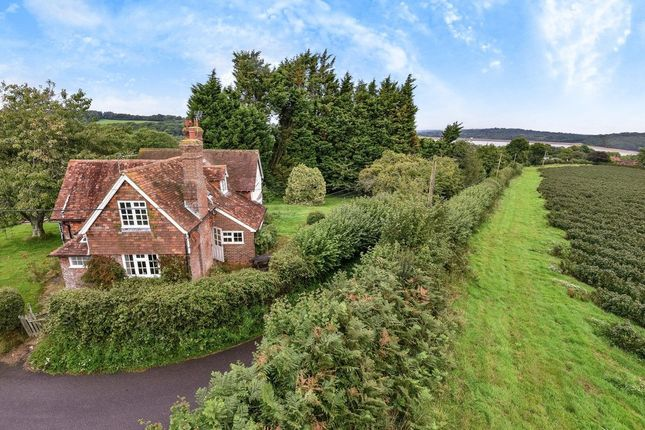 Thumbnail Detached house for sale in Wadhurst