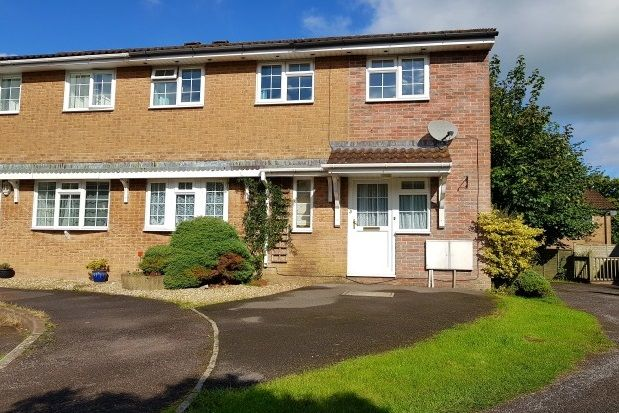Thumbnail Semi-detached house to rent in Badger Close, Honiton