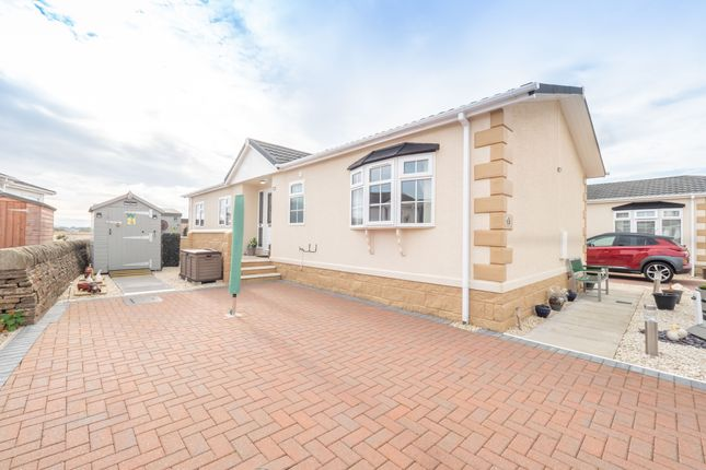 Thumbnail Detached house for sale in Basin View Crescent, Montrose