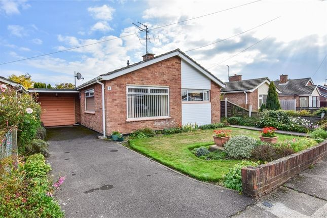 Thumbnail Detached bungalow for sale in Anthony Close, Colchester, Essex