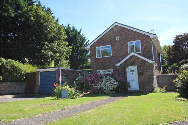 Thumbnail Detached house to rent in Bonhams Close, Holybourne, Alton, Hampshire