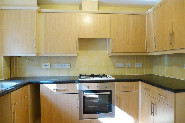Thumbnail Property to rent in Massingham Park, Taunton