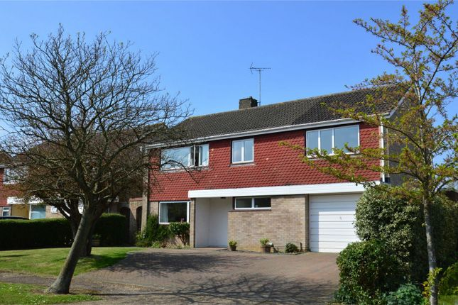 Thumbnail Detached house for sale in Stag Green Avenue, Hatfield, Hertfordshire