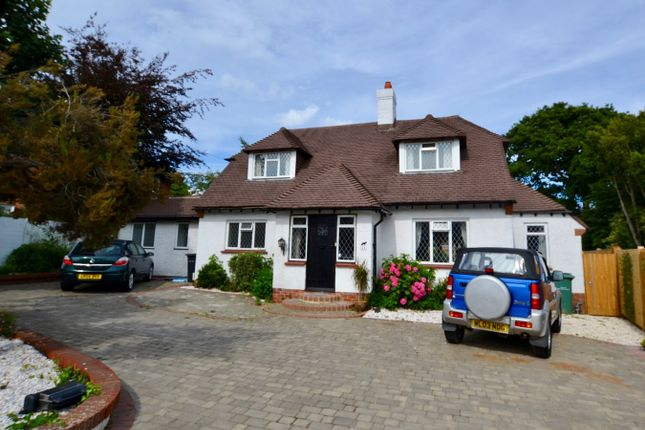 Thumbnail Detached house to rent in Kewhurst Avenue, Bexhill-On-Sea