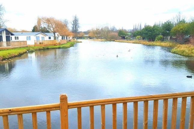 Thumbnail Lodge for sale in Shark Island, Northampton