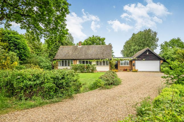 Thumbnail Detached house for sale in Hill Common, Hickling, Norwich, Norfolk