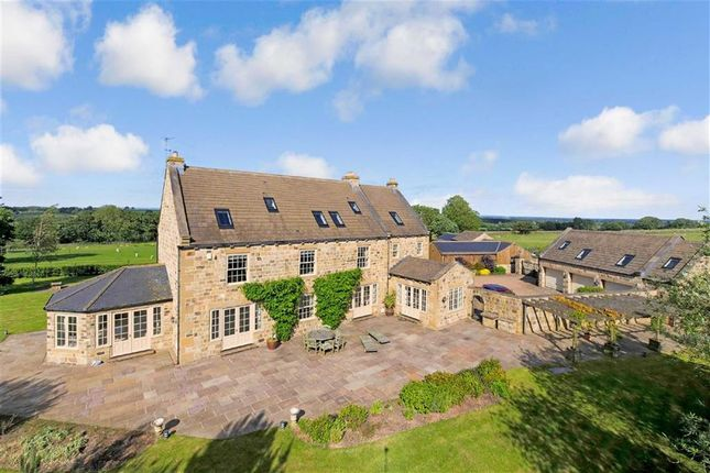 Thumbnail Detached house to rent in Spinner Lane, Clint, North Yorkshire