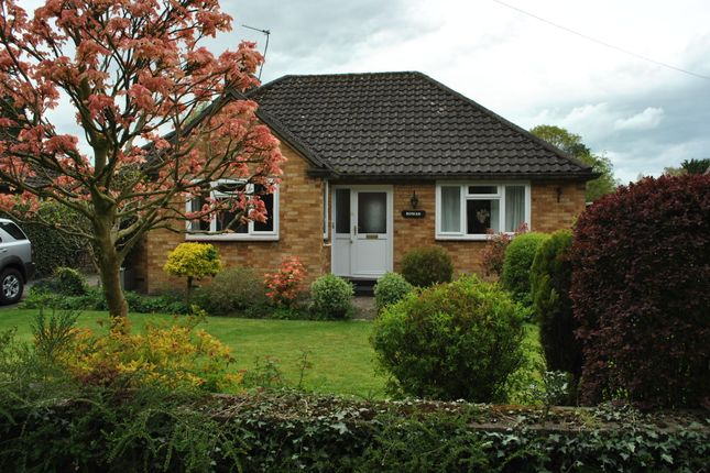 Thumbnail Detached bungalow to rent in Heathwood Road, Higher Heath, Whitchurch, Shropshire