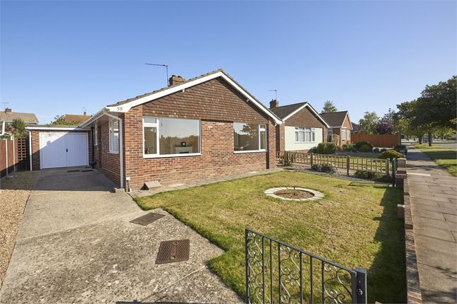 Thumbnail Detached bungalow for sale in Fifth Avenue, Frinton-On-Sea