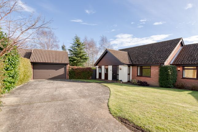 3 bed detached bungalow to rent in Mayfield Road, Ipswich, Suffolk IP4
