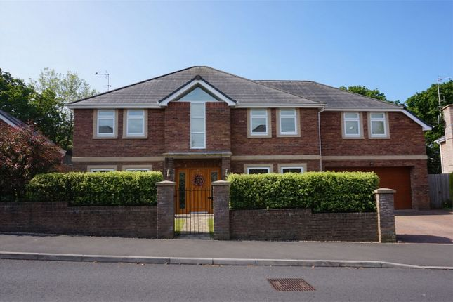 Thumbnail Detached house for sale in Moorland Avenue, Newton, Swansea
