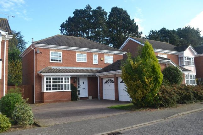 Thumbnail Detached house to rent in Hazel Drive, Purdis Farm, Ipswich