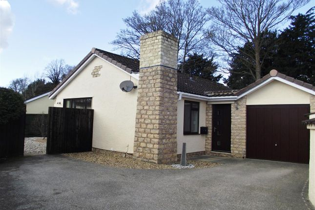 Thumbnail Bungalow for sale in Yew Tree Close, Calne